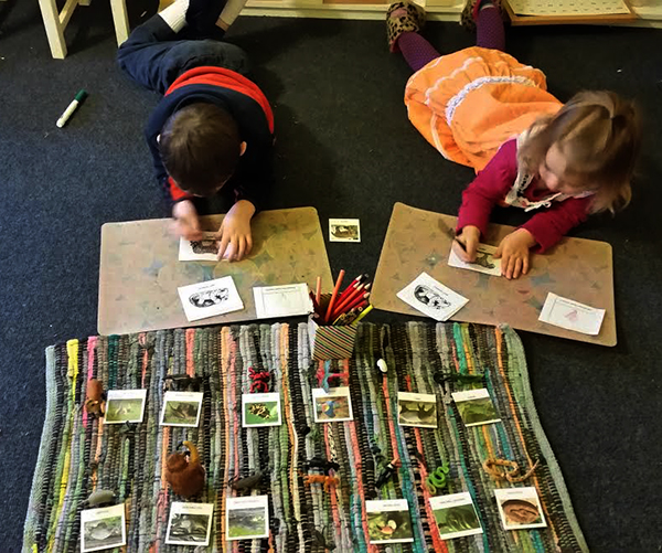 Science through hands on experience at MVM Charter School in Fruita, CO